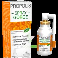 3 CHENES PROPOLIS Spray gorge Fl/25ml à GUJAN-MESTRAS