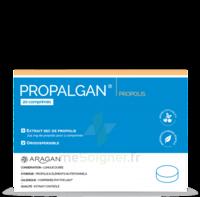 Aragan Propalgan Comprimés orodispersibles adulte B/20 à GUJAN-MESTRAS