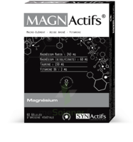 Synactifs Magnactifs Gélules B/60 à GUJAN-MESTRAS