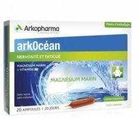 Arkocean Magnesium Marin Solution buvable caramel 20 Ampoules/10ml à GUJAN-MESTRAS