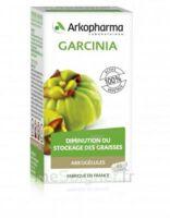 Arkogélules Garcinia Gélules Fl/45 à GUJAN-MESTRAS