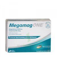 megamag one à GUJAN-MESTRAS