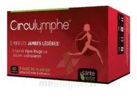 Santé Verte Circulymphe Triple Actions B/60 à GUJAN-MESTRAS