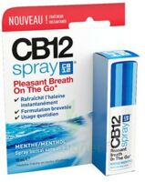 CB 12 Spray haleine fraîche 15ml à GUJAN-MESTRAS