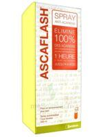 Ascaflash Spray anti-acariens 500ml à GUJAN-MESTRAS