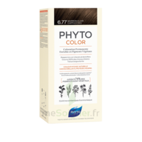 Phytocolor Kit coloration permanente 6.77 Marron clair cappuccino à GUJAN-MESTRAS