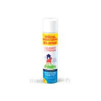 Clément Thékan Solution Insecticide Habitat Spray Fogger/300ml à GUJAN-MESTRAS