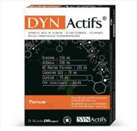Synactifs Dynactifs Gélules B/30 à GUJAN-MESTRAS