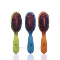 Cartel Brosse Cheveux Pneumatique Sanglier Large à GUJAN-MESTRAS
