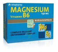 Arkovital Magnésium Vitamine B6 Gélules B/120 à GUJAN-MESTRAS