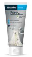 Biocanina Shampooing éclat poils blancs 200ml à GUJAN-MESTRAS