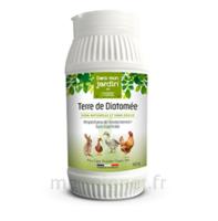 Clément Thékan Dans mon jardin Aliment complémentaire Terre de Diatomée Pot/150g à GUJAN-MESTRAS