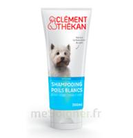 Clément Thékan Shampooing poils blancs T/200ml à GUJAN-MESTRAS