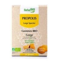 Herbalgem Propolis large spectre Gomme bio B/24 à GUJAN-MESTRAS