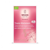 "Weleda Tisane Allaitement ""Fruits rouges"" 2x20g à GUJAN-MESTRAS"