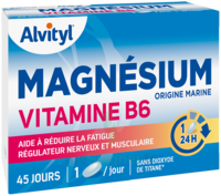 Govital Magnésium Vitamine B6 Comprimés B/45 à GUJAN-MESTRAS