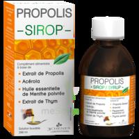 3 CHENES PROPOLIS Sirop Fl/200ml à GUJAN-MESTRAS
