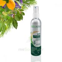 Naturactive Assaini'spray 200ml à GUJAN-MESTRAS