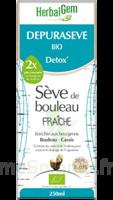 Depuraseve Solution buvable bio Fl/250ml à GUJAN-MESTRAS