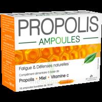 3 CHENES PROPOLIS Solution buvable 10 Ampoules/10ml à GUJAN-MESTRAS